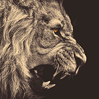 Liondaeron